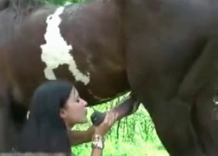 Crazy oral creampie by a stallion